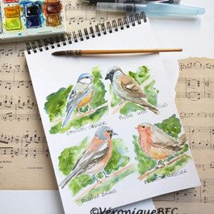 Pour un amoureux des oiseaux - aquarelle